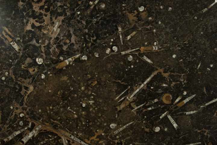 FOSSIL BROWN MARBLE SLAB 30MM